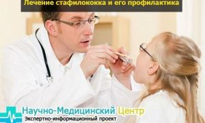 Как проходит лечение стафилококка?
