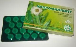 Как разводить хлорофиллипт для горла?